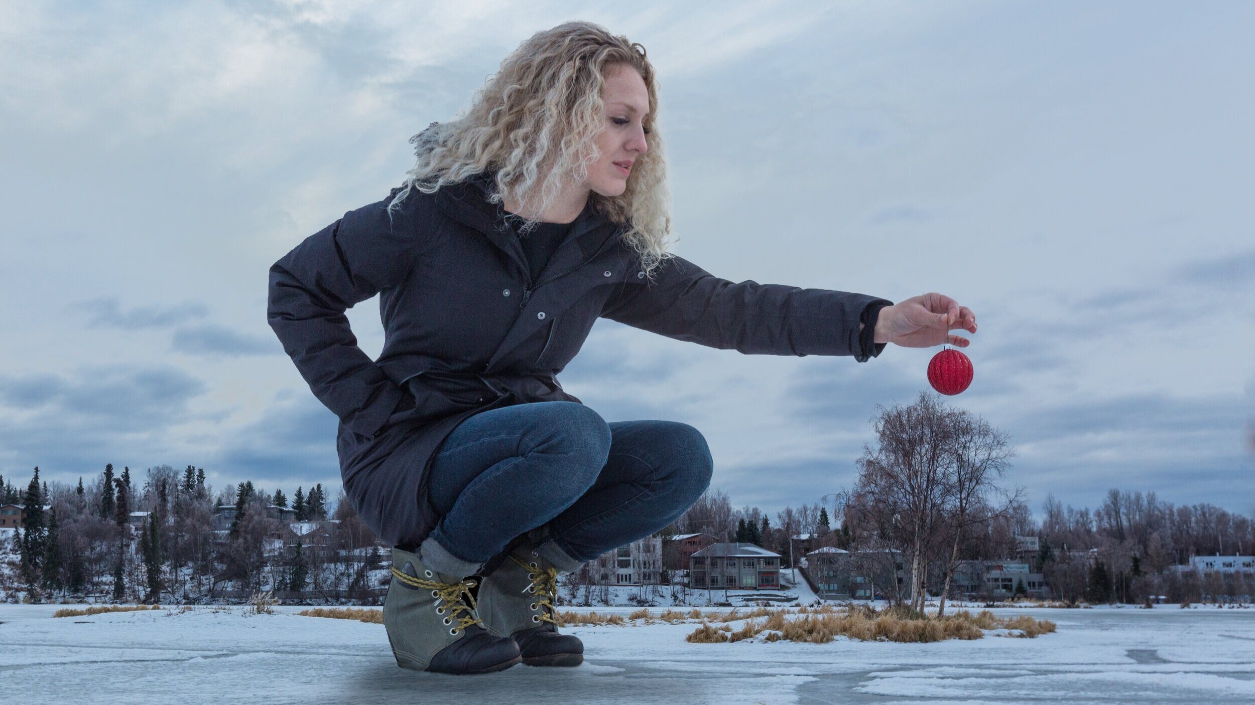 alaska-photoventures-ornaments.jpg
