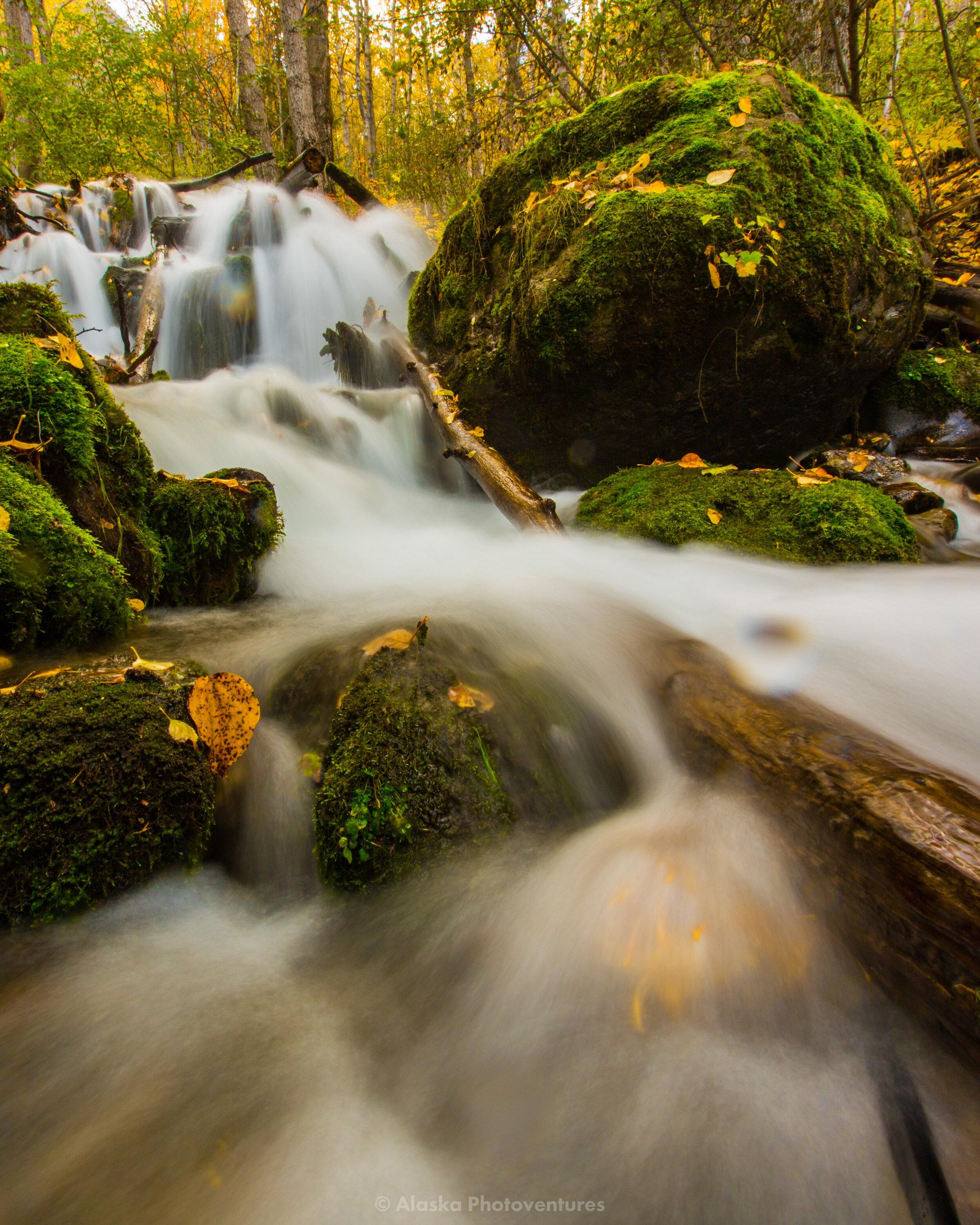 alaska-photoventures-waterfall-photography-falls-creek.jpg
