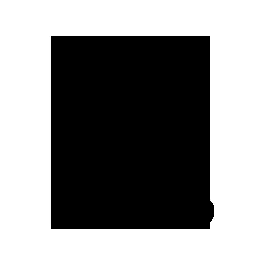 bdlogoblack.png
