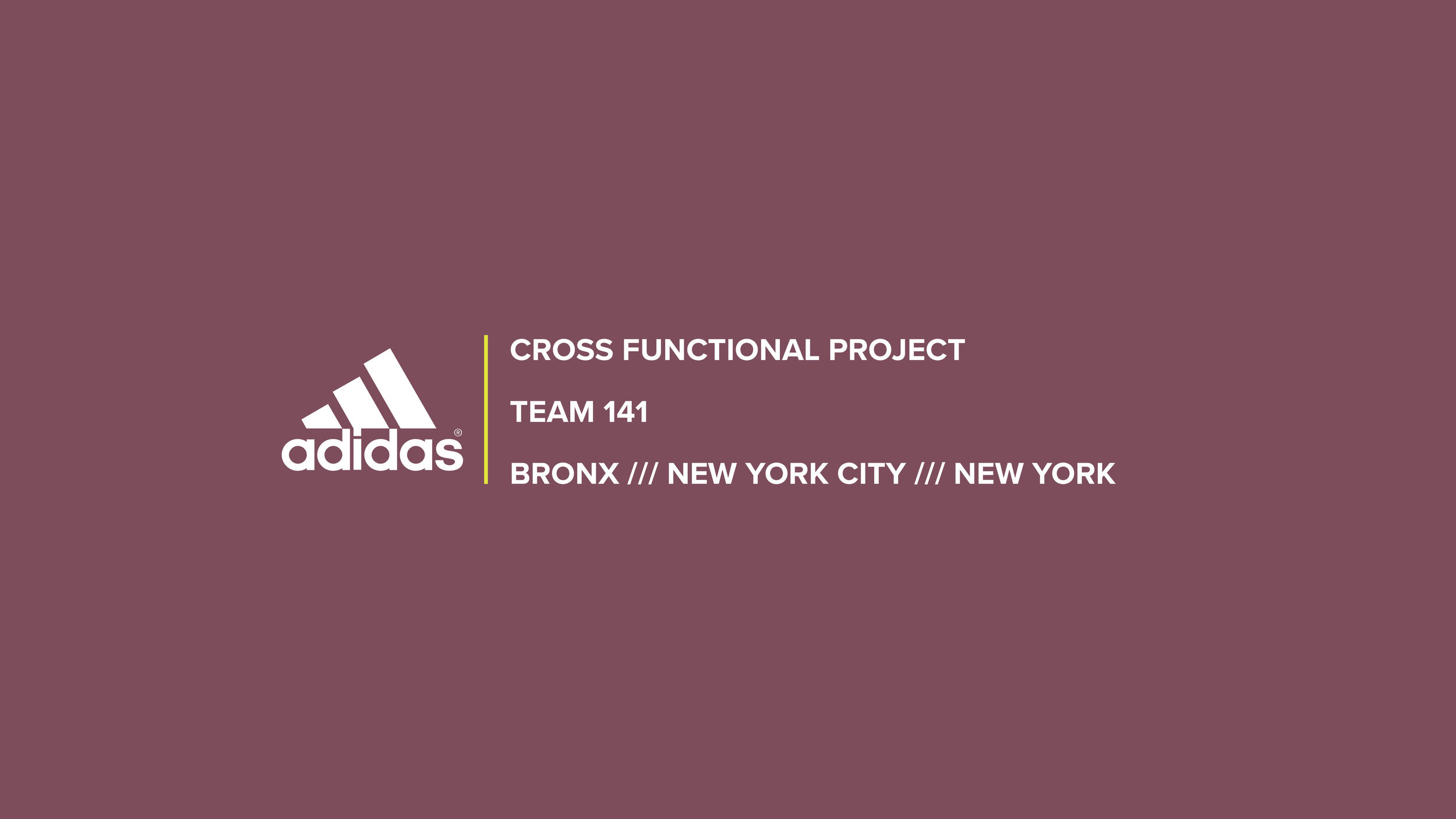 Team14PresentationPUBLIC.jpg