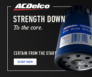 2019»ACDelco»»LB»LS»None»Shopper Retargeting»Amazon Oil Filters»Static»US»ENG»v1»300x250»1QTL.jpg
