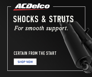 2019»ACDelco»»LB»LS»None»Shopper Retargeting»Amazon Shocks and Struts»Static»US»ENG»v1»300x250»1QTL.jpg
