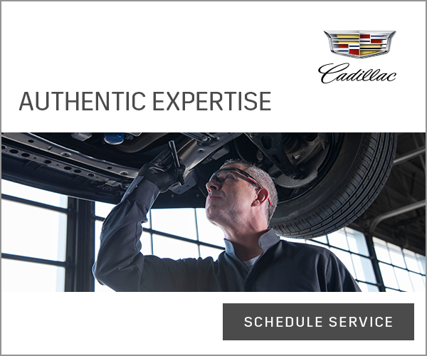 cs-18-cad-superiority-300x250-authentic-expertise-F1.jpg
