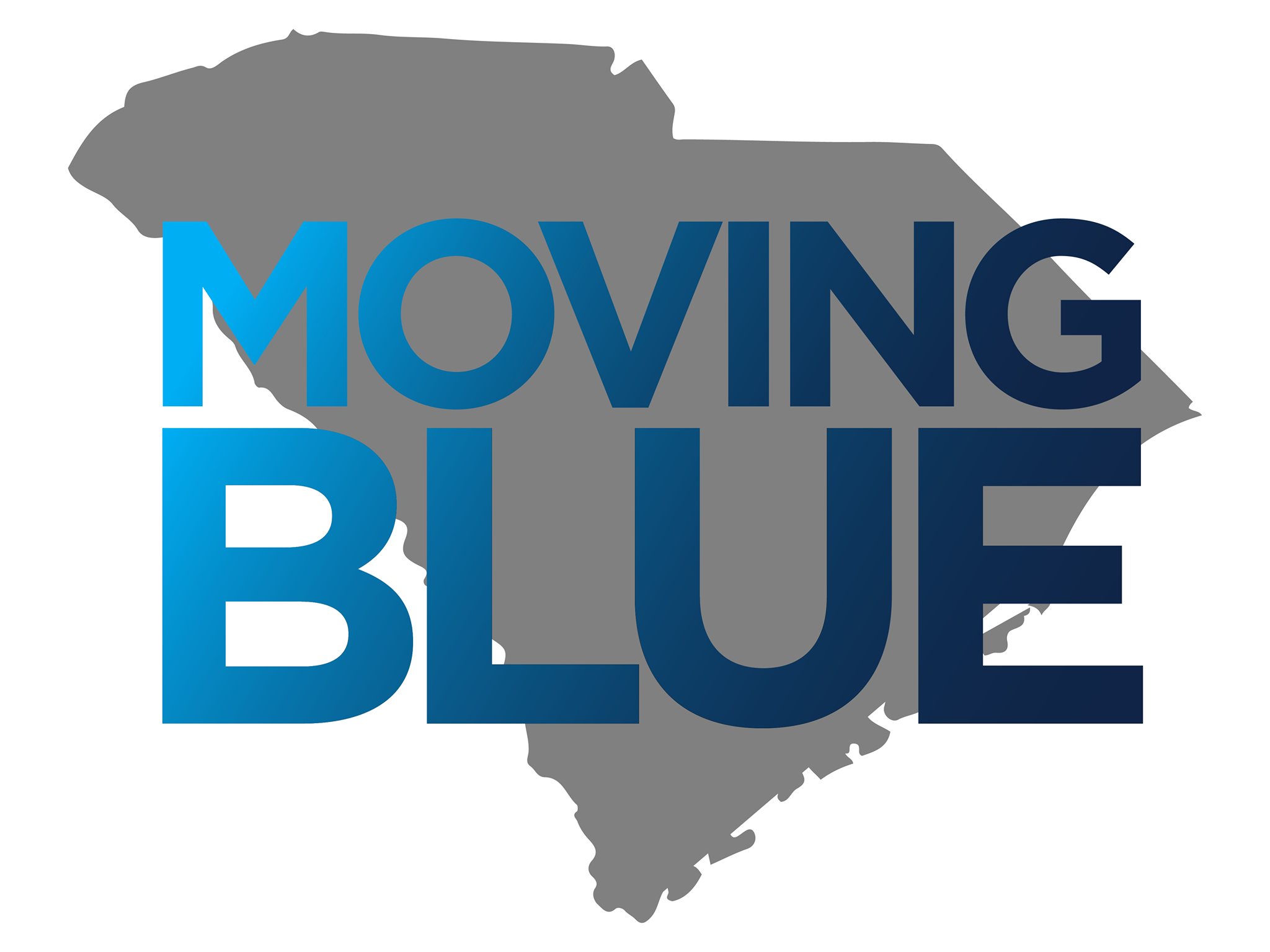 Moving Blue - Cynthia Watson is our new full-time Field Organizer devoted to Moving Blue, our Five County Initiative to move Joe Wilson out of office.