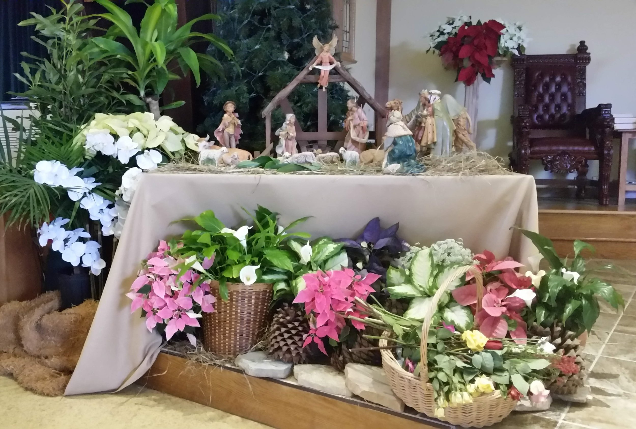 Creche display Christmas 2018 Our Lady of Mount Carmel Swartswood
