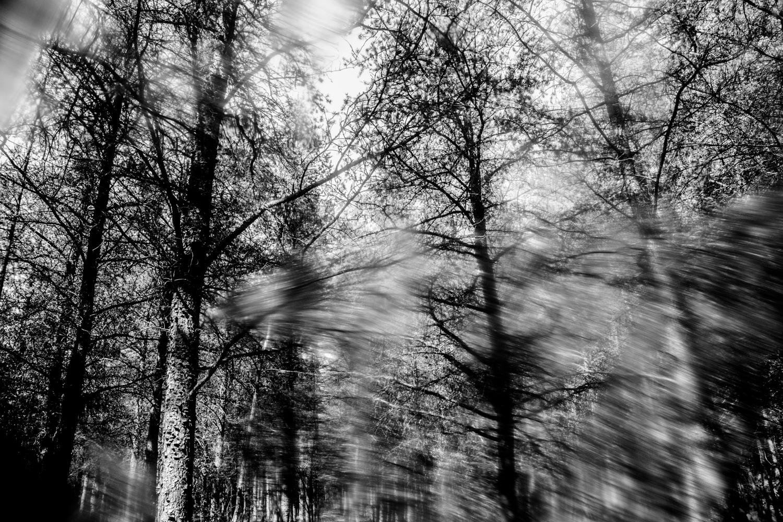 Darkness18.jpg