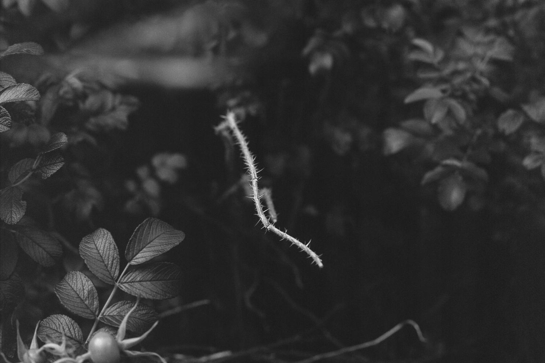 Darkness22.jpg