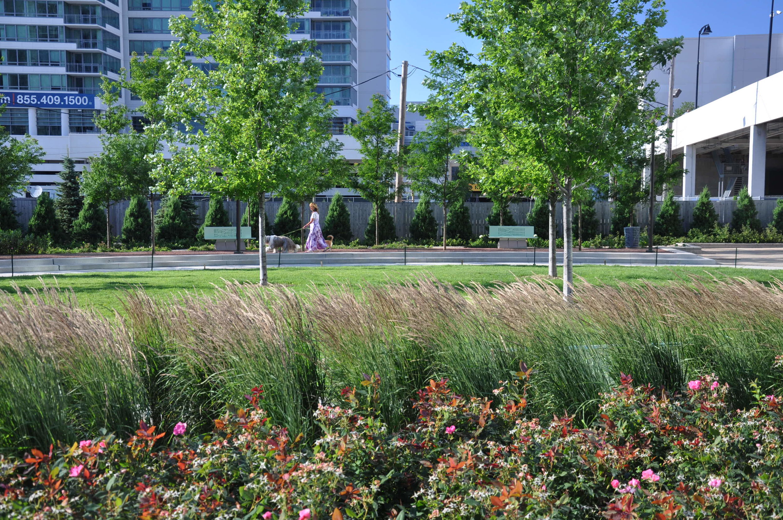 Trio Park