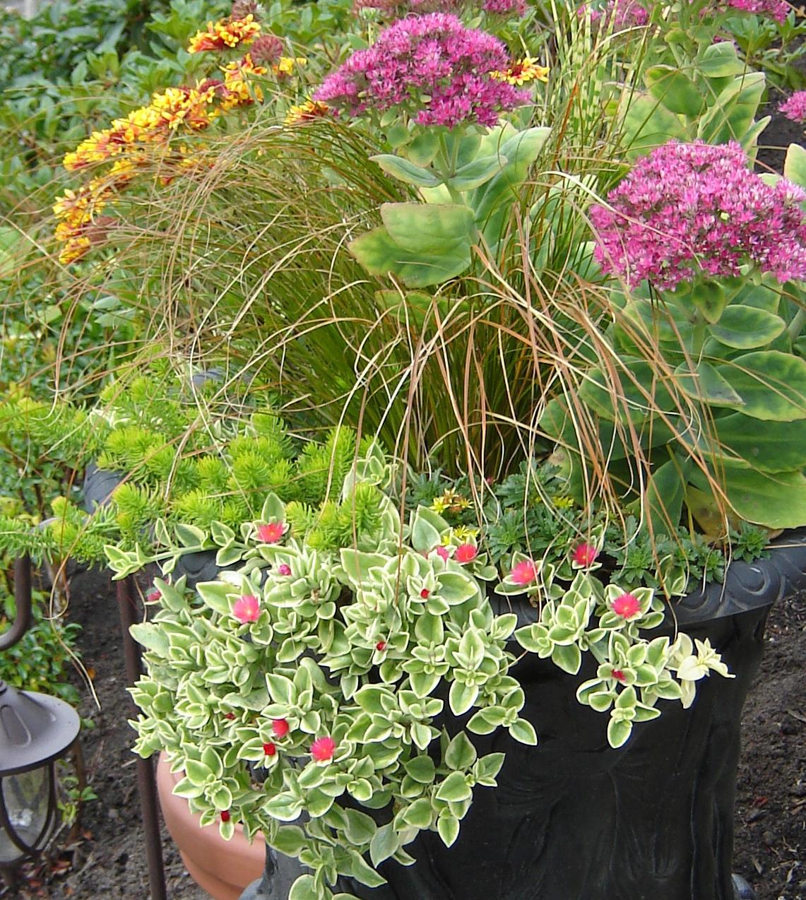 Garden designis my passion -