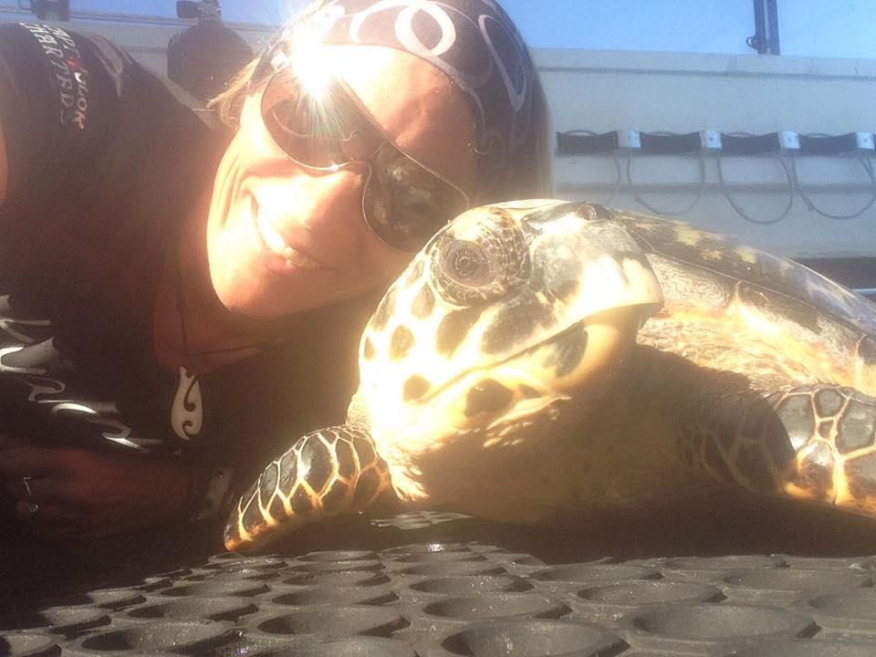 Anne Turtle.jpg