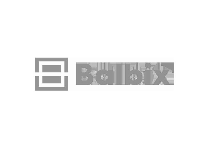 Balbix1.png