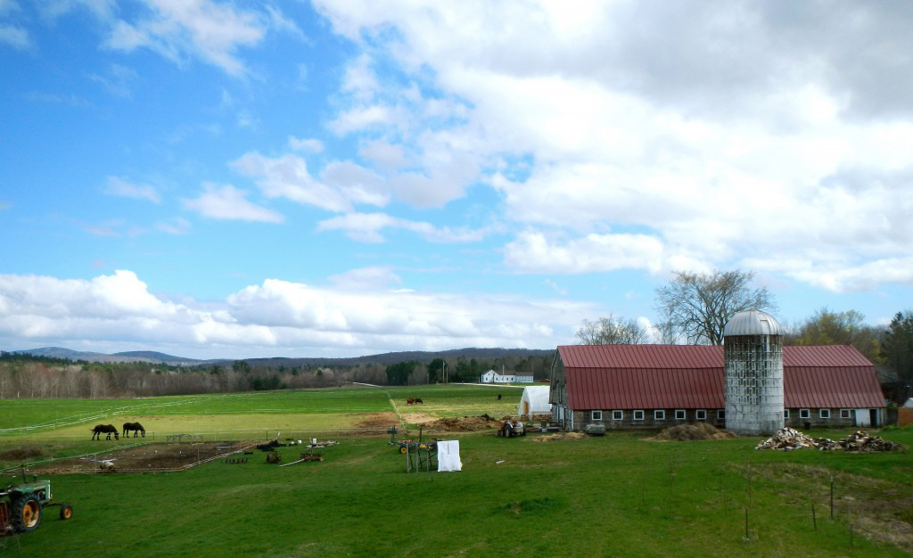 North Branch Farm, an organic farm in Monroe, ME, sells produce to area institutions, including Waldo County General Hospital.