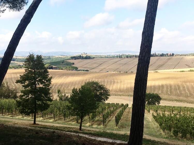 Chianti, Italy -