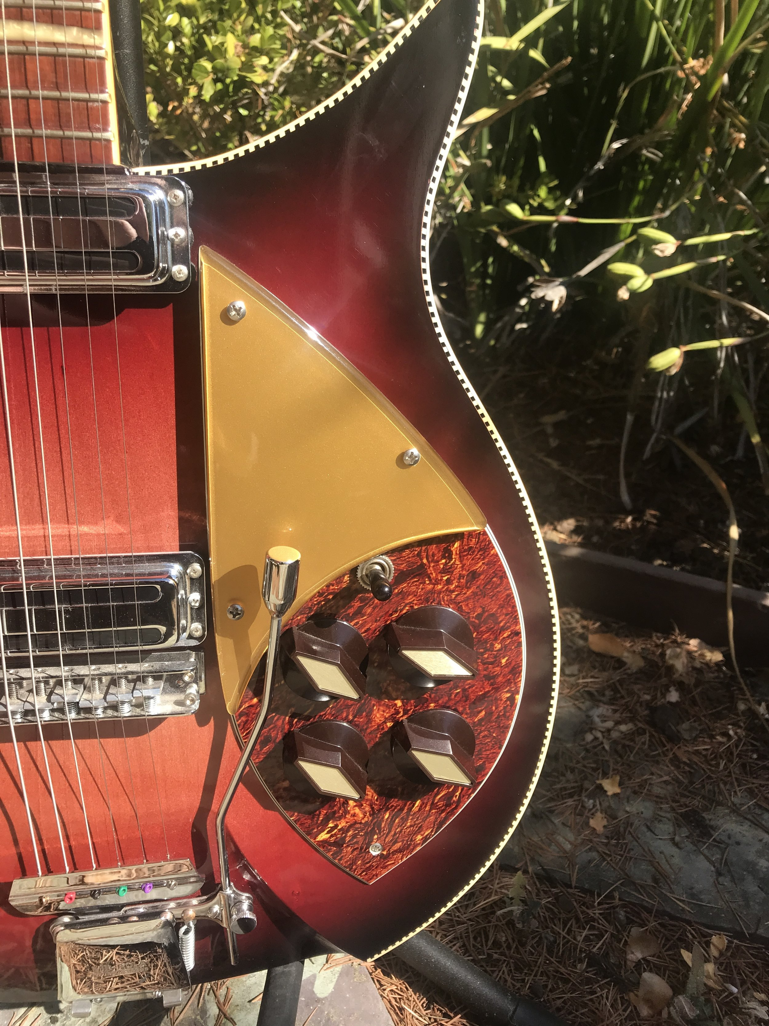 GOLD AND TORTOISE PICKGUARDS