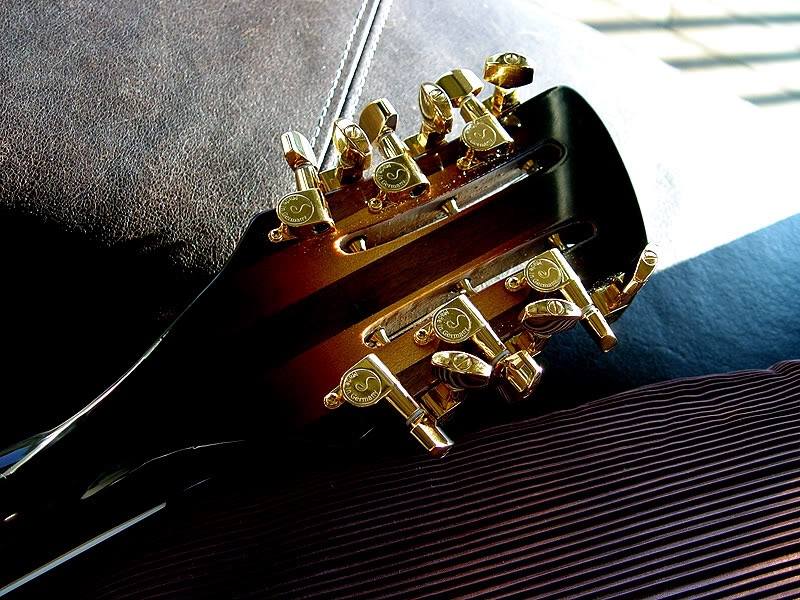 BACK VIEW OF SHADED HEADSTOCK