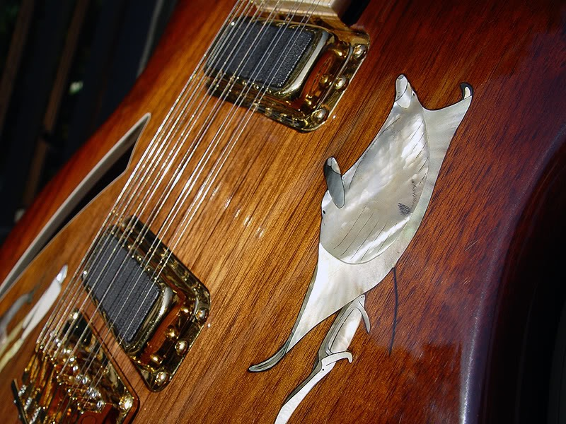 380L 12-STRING CONVERSION WITH ADDED PIEZO