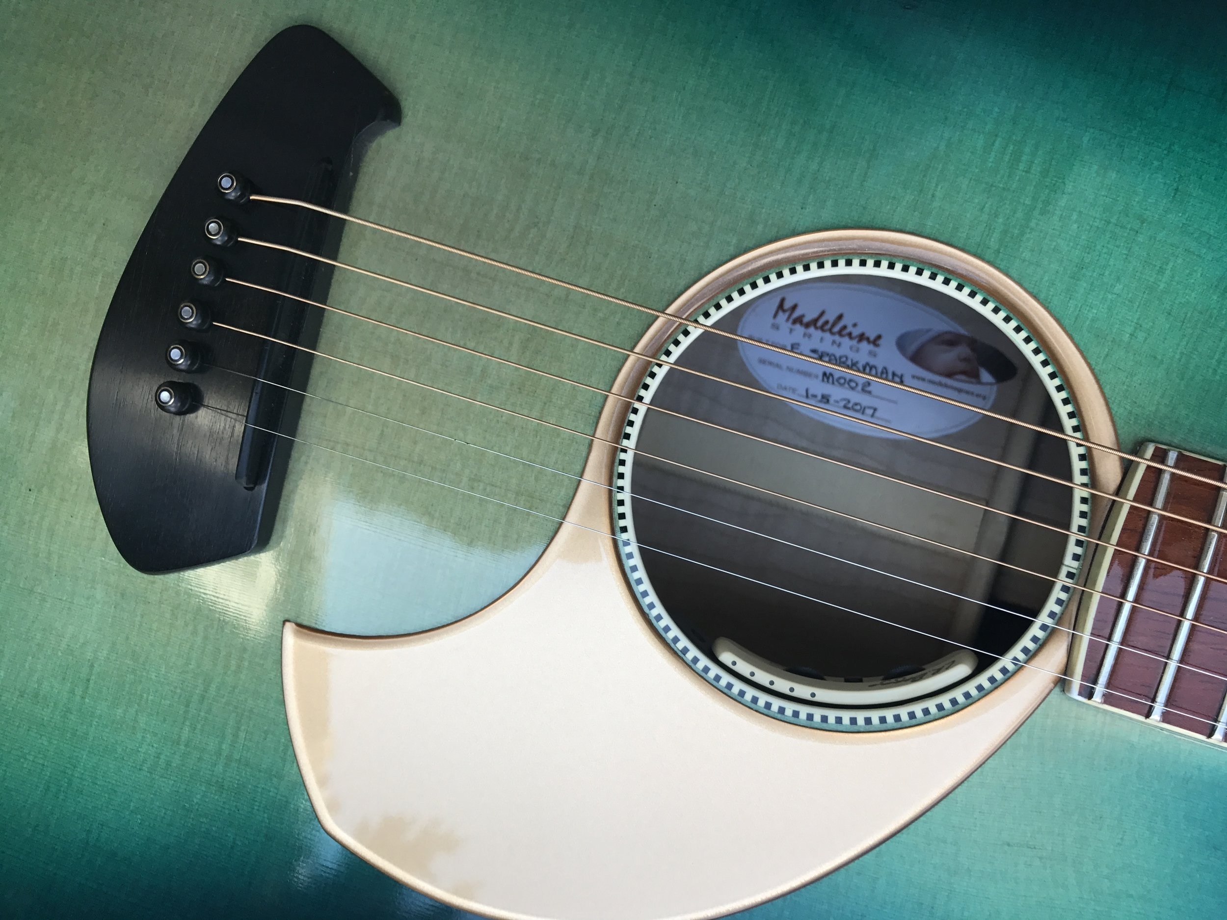 MADELEINE STRINGS 730L LARAMIE 6-STRING DREADNOUGHT