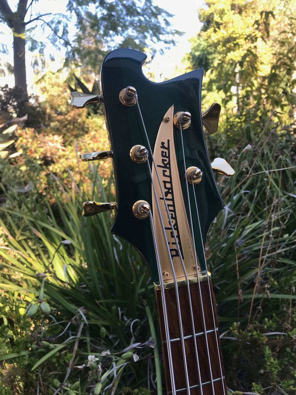 GOLD NAMEPLATE AND GOLD-PLATED SCHALLER TUNERS