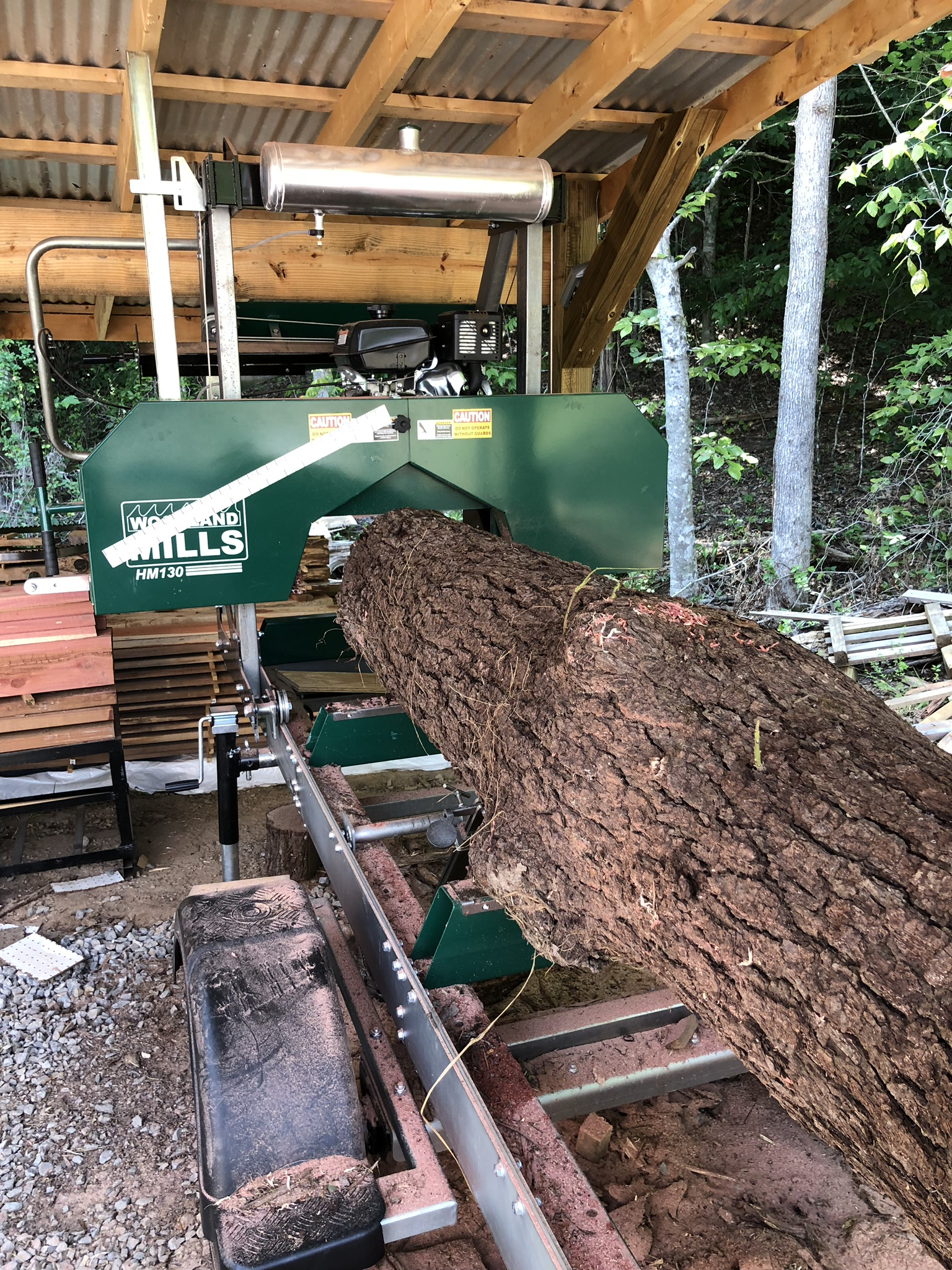 Walnut log ready to be cut.
