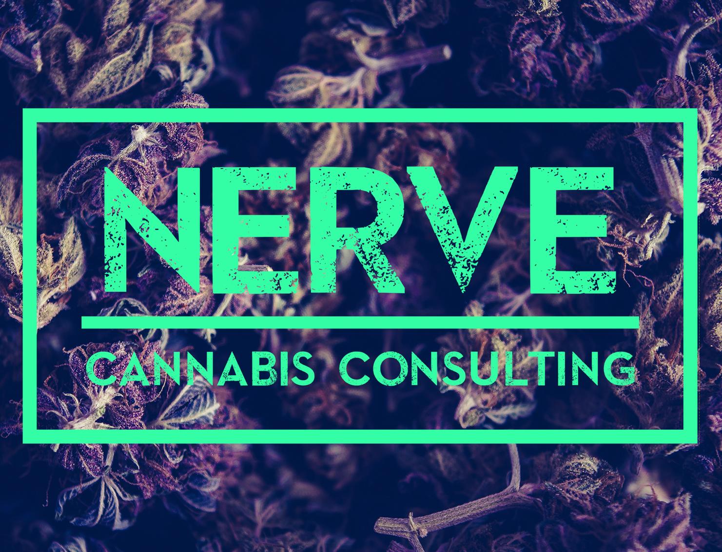 Nerve_logo_Layer Comp 6.jpg