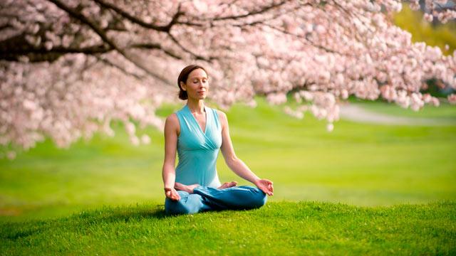meditation in cherry blossoms.jpg