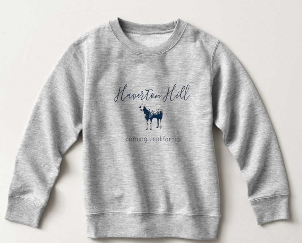 TODDLER + YOUTH SWEATSHIRT $28-  GRAY with NAVY BLUE  2 toddler -6 toddler | youth xs-xl