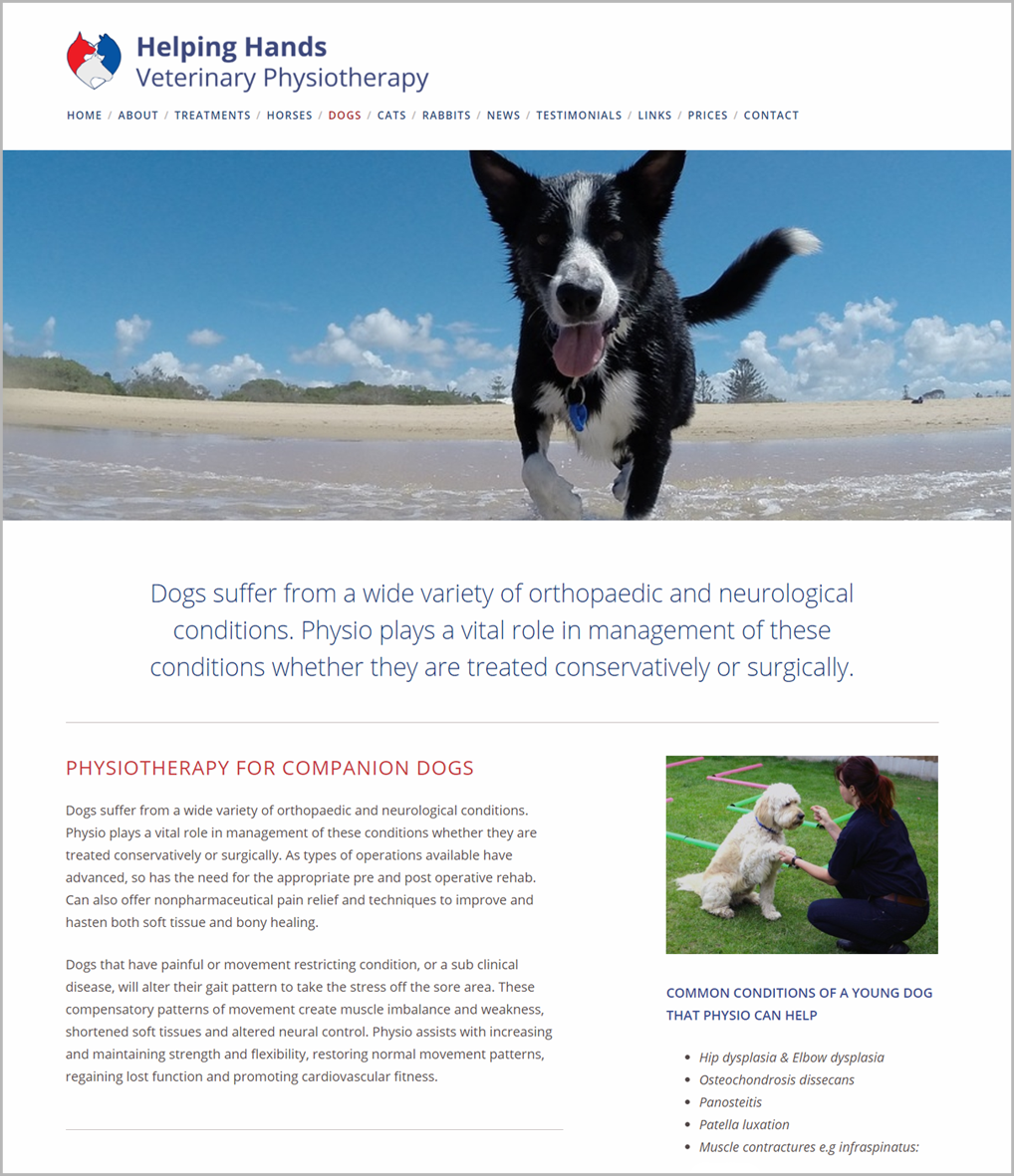 Helping Hands Veterinary Physiotherapy