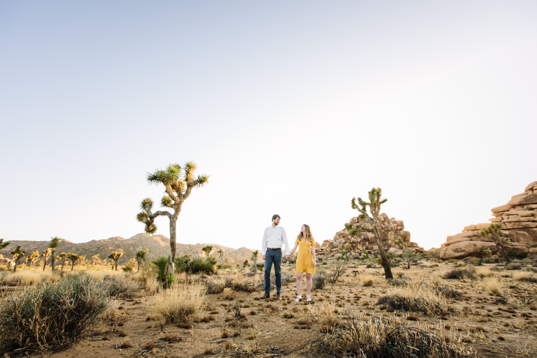 Epic Joshua Tree Engagement Session