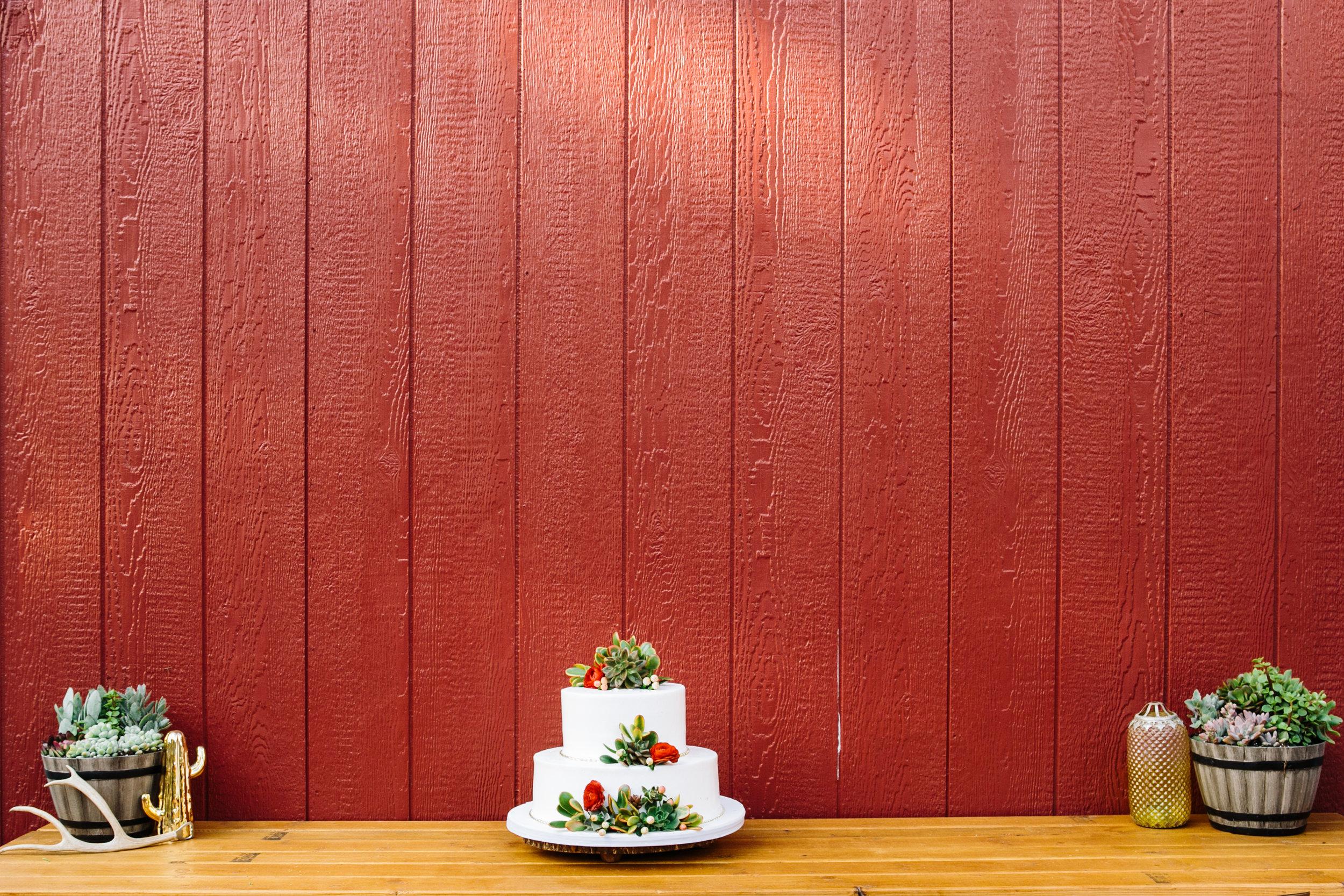 Reptacular Ranch wedding cake detail