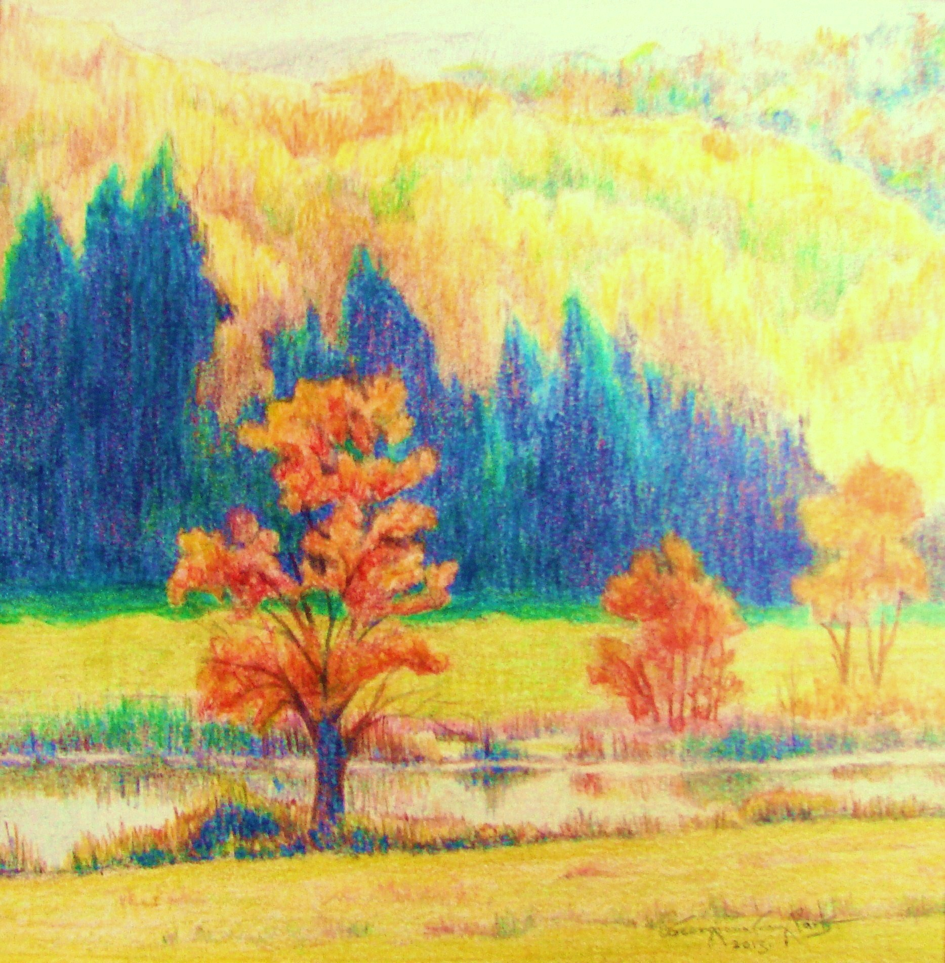 Bart_Three Fall Trees_ colored pencil_.JPG