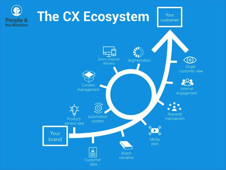 CX Ecosystem 2.jpg