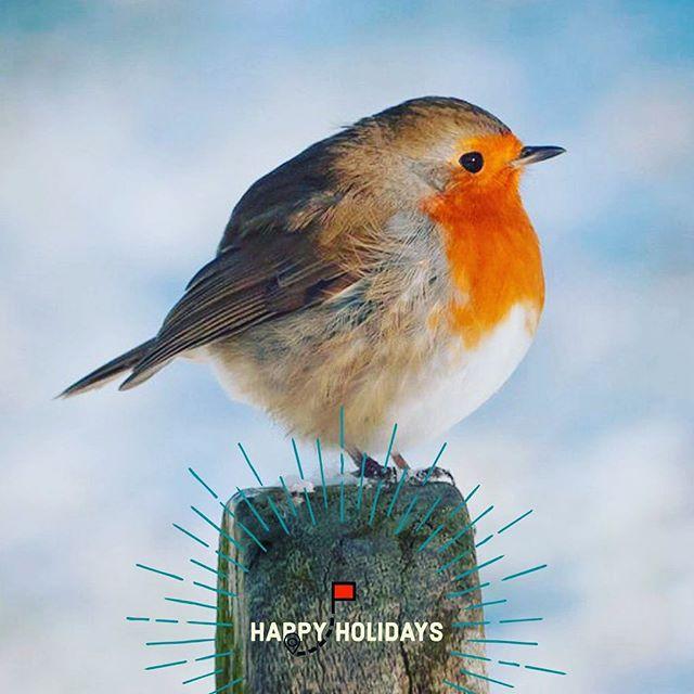 Wishing you a warm & wonderful season. See you in the new year..