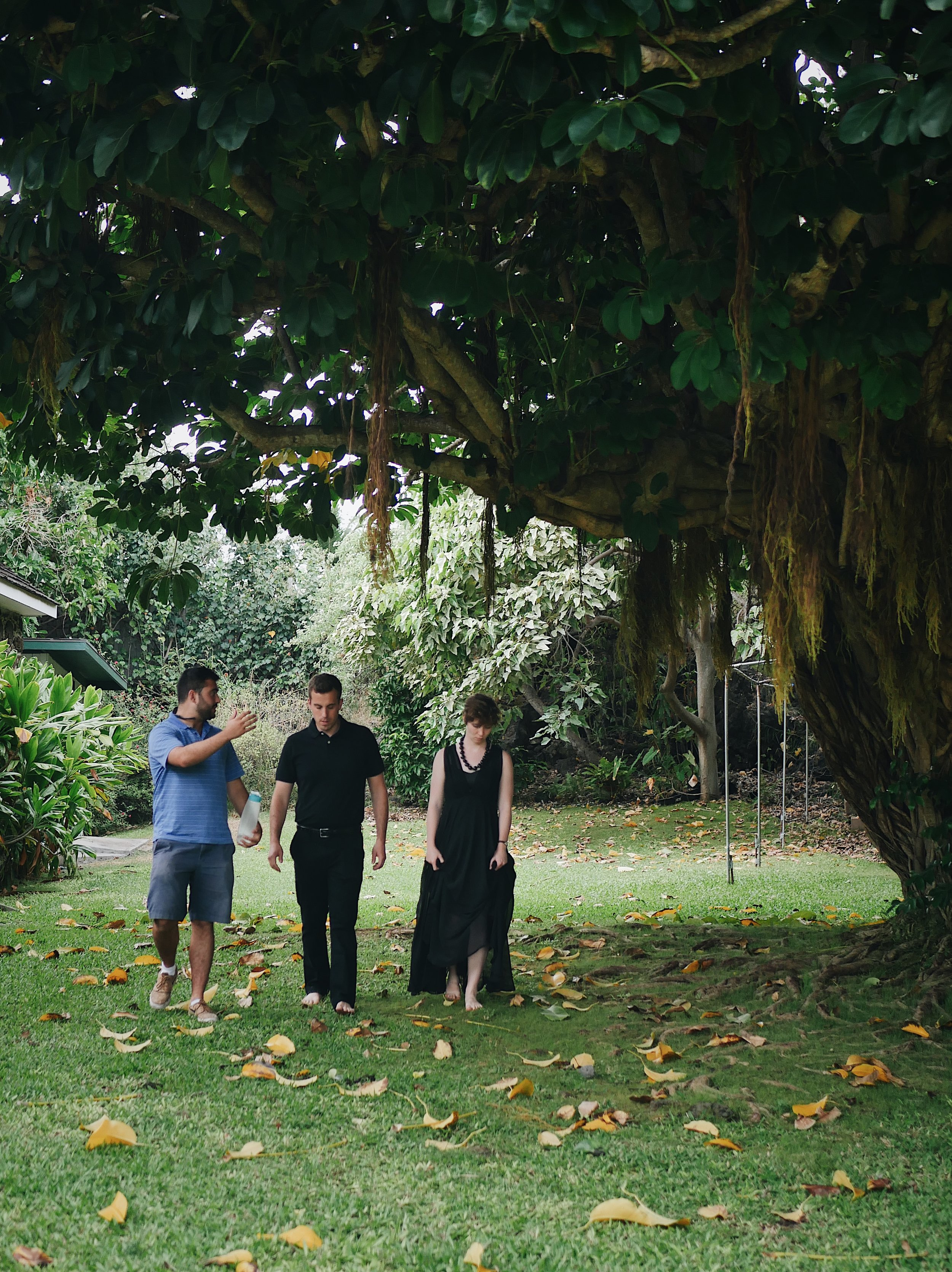 John Schafer, Steve Spinelli, and Brigid Lucey beneath a banyan tree beside Keawala'i Congregational Church