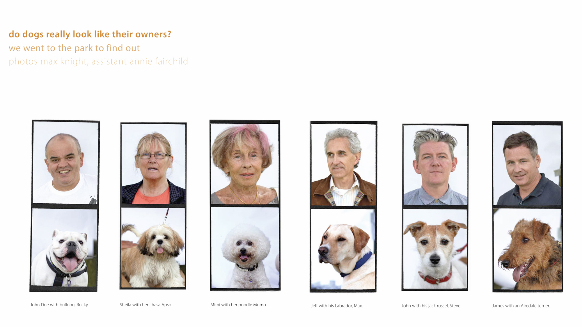 Dogs and their Owners  Oh Comely Magazine