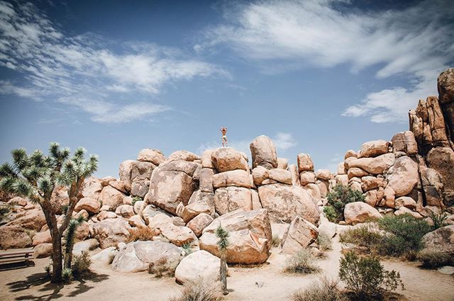 Got Some Epic Content Today Out In Joshua Tree With The Ladies. I Made Teila Climb Up The Rocks As I Stood On Top Of A Public Restroom😂 #wnkb #joshuatree #sleeplesslivemore #happyhour #desertvibes #canonusa #desertlife