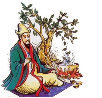 Brew on THAT! - According to legend, in 2737 BC, the Chinese emperor Shen Nung was sitting beneath a tree while his servant boiled drinking water, when some leaves from the tree blew into the water. Shen Nung, a renowned herbalist, decided to try the infusion that his servant had accidentally created. The tree was a Camellia sinensis, and the resulting drink was what we now call tea.