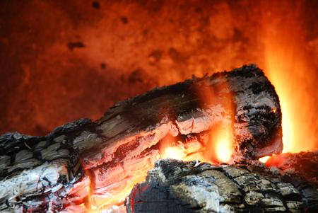 firelace-sm.jpg