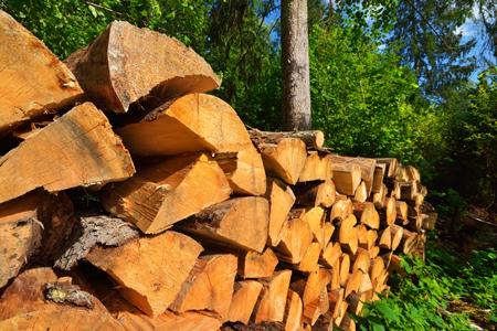 firewood-sm.jpg