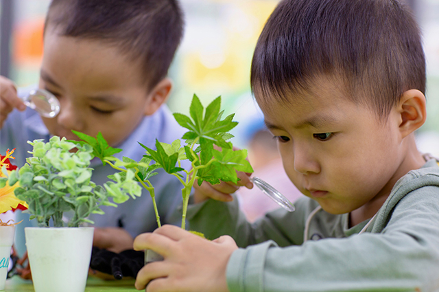 KG examining plant.jpg