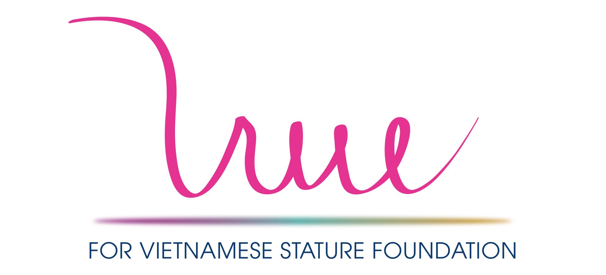 For Vietnamese Stature Foundation.jpg
