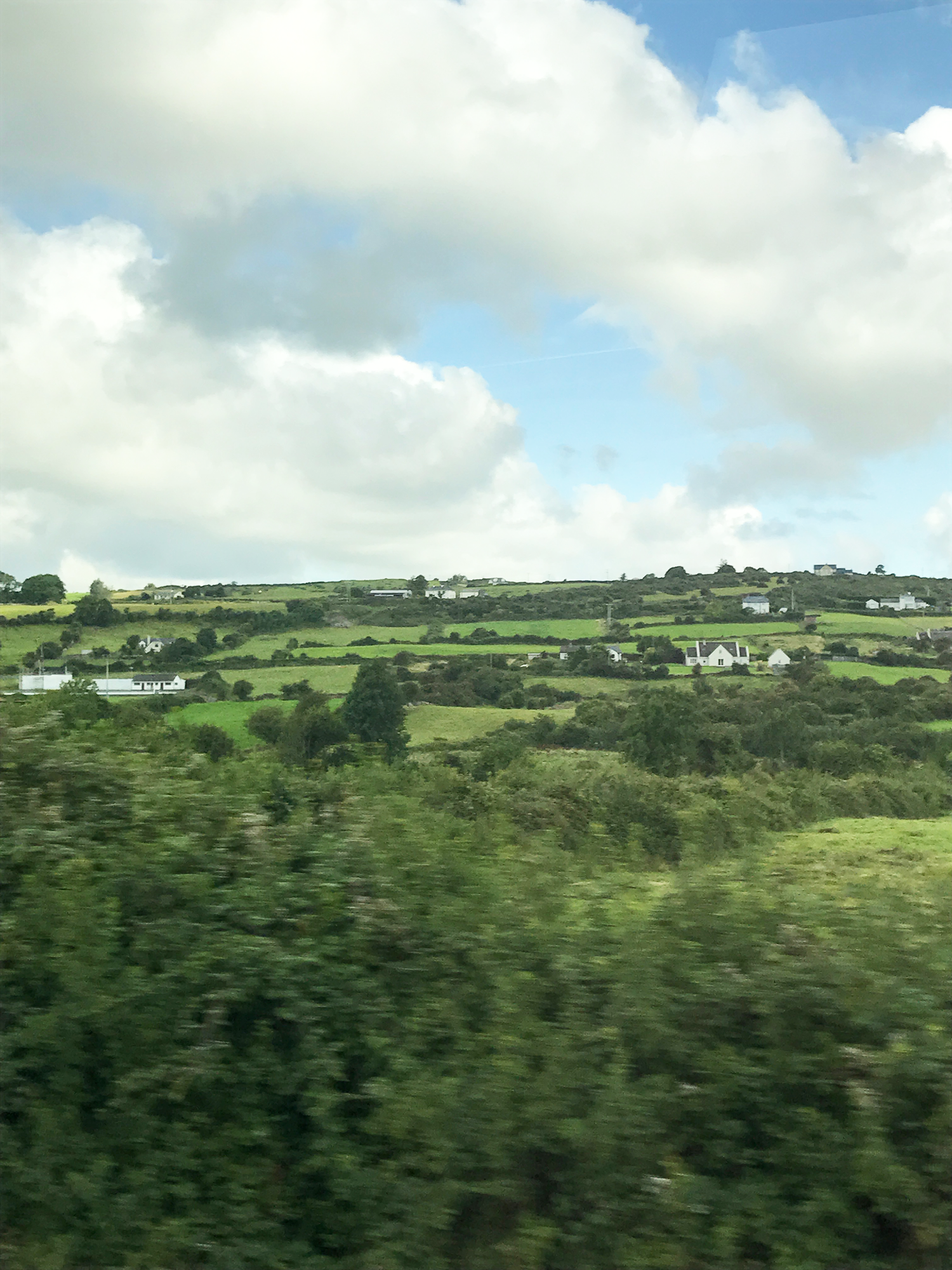 The view out my window on the bus. Also (not pictured), I've never seen so many cows and sheep in my life.