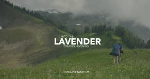 INTO THE LAVENDER CREASES OF EVENING - DIRECTED BY CALEB YOUNGWRITTEN BY JOSHUA YOUNG