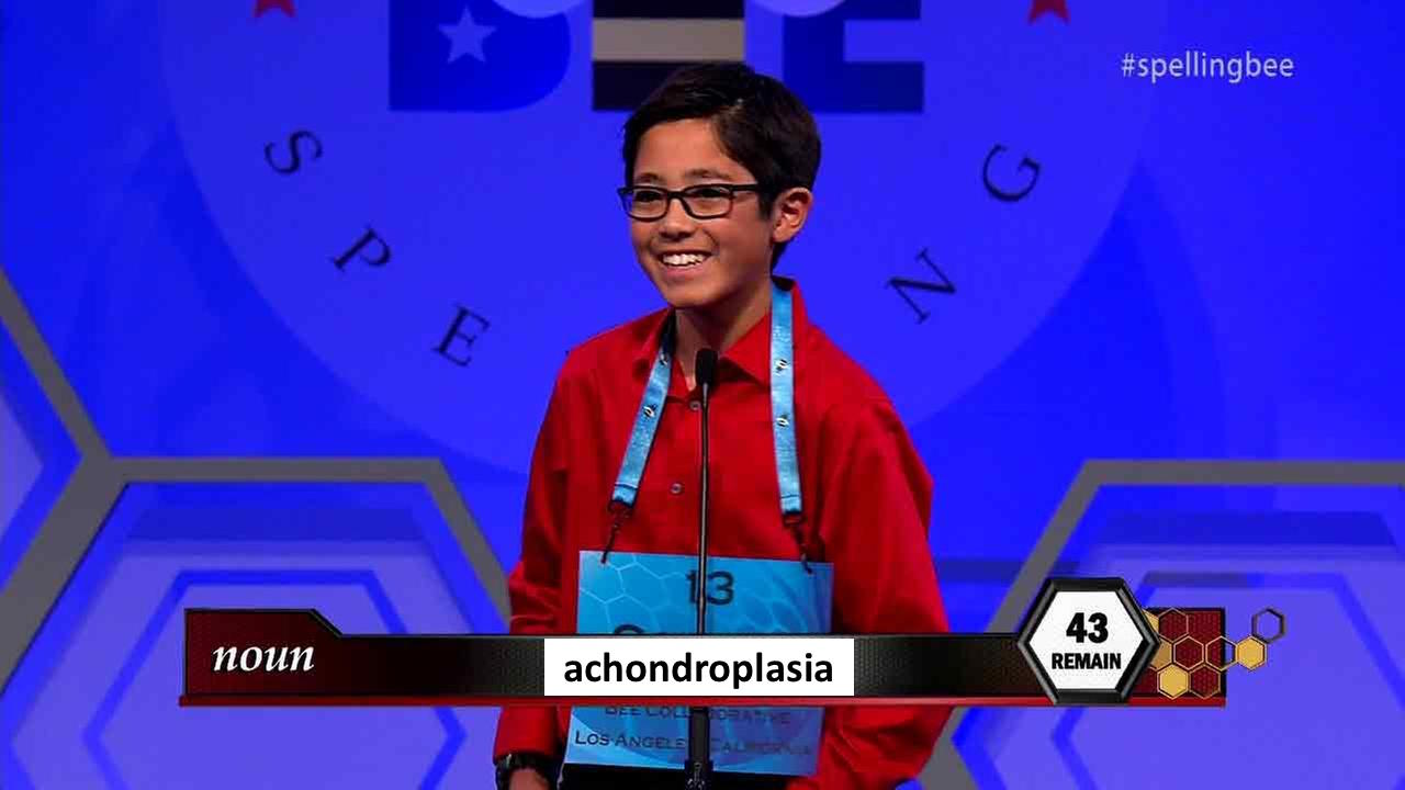 Shire_spelling bee 2.jpg