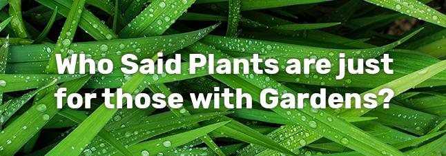 Gardens for everyone.jpg