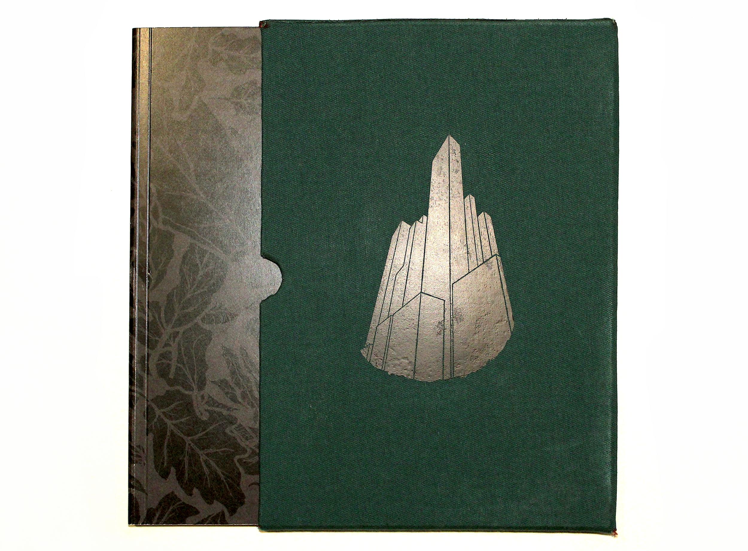 FINSHED BOOK copy.png