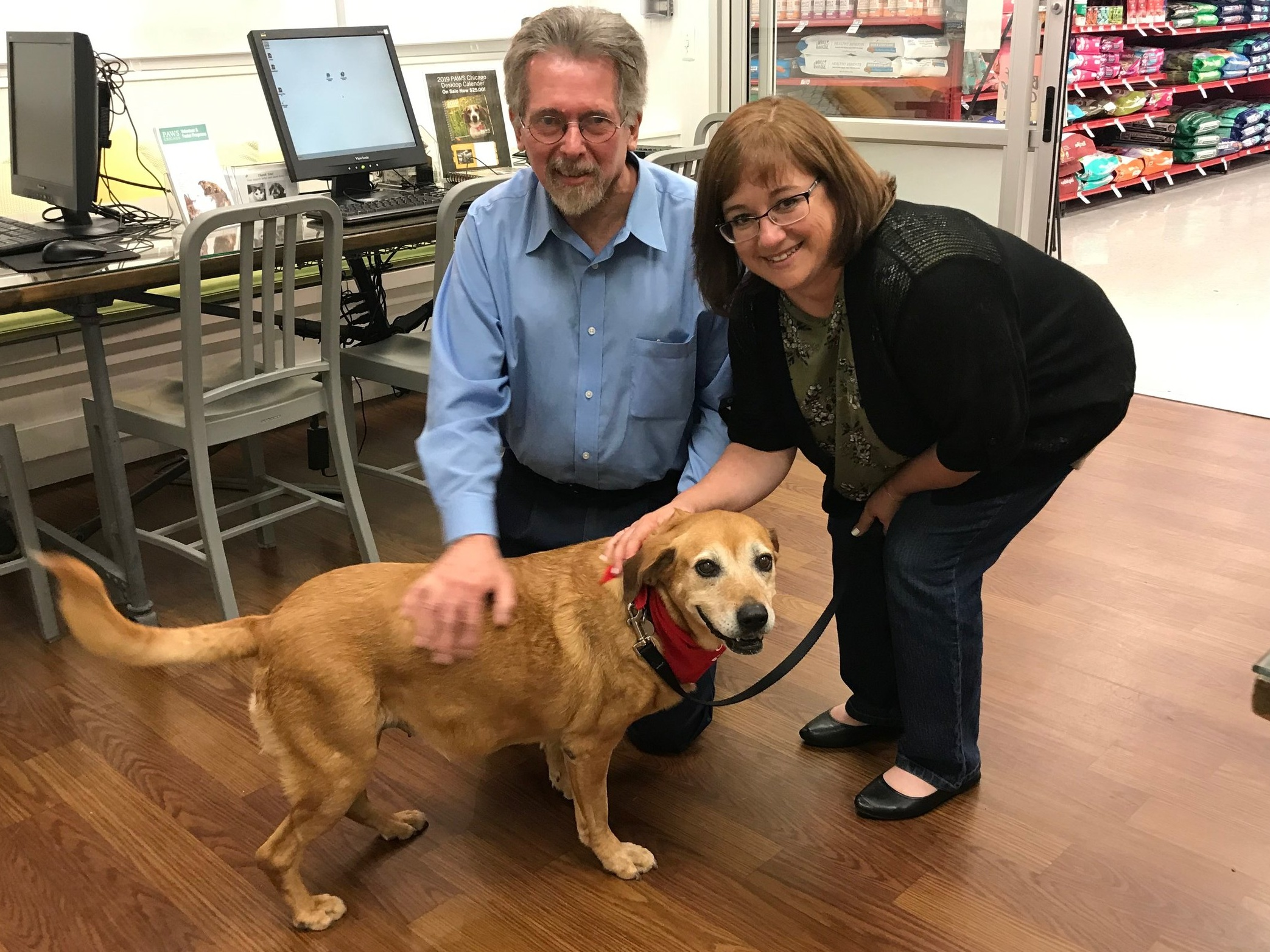 Meet Lolita, a senior pup who was adopted from PAWS Chicago yesterday with the help of the PR Foundation sponsoring her adopting fees for her new owners.