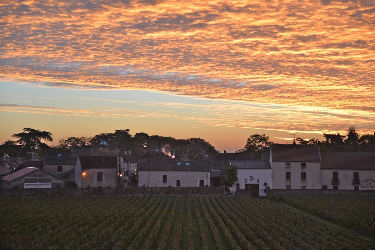 Sunrise from Room 2 - vineyard Clos des Meix