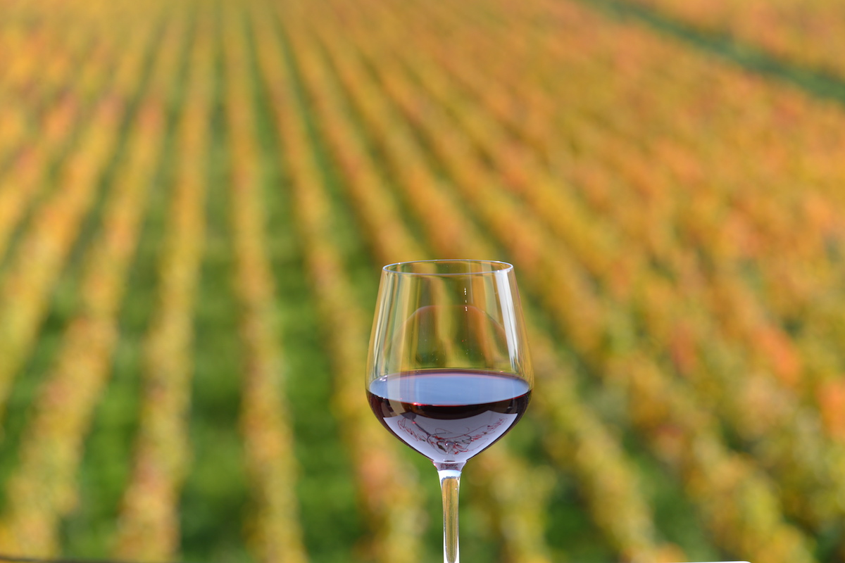 'The burgundy guides'- suggested visits, guides to restaurants and shopping -