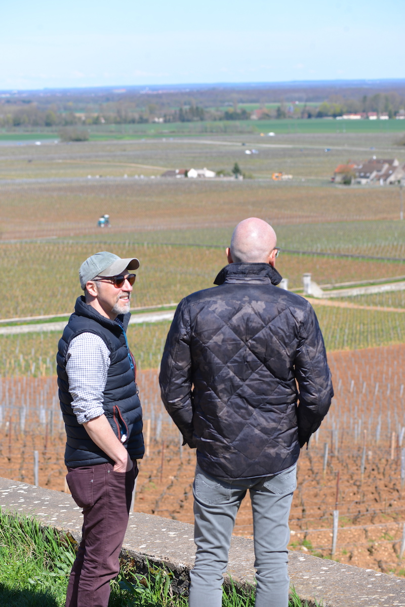 The Story of Domaine de la Romanee Conti -