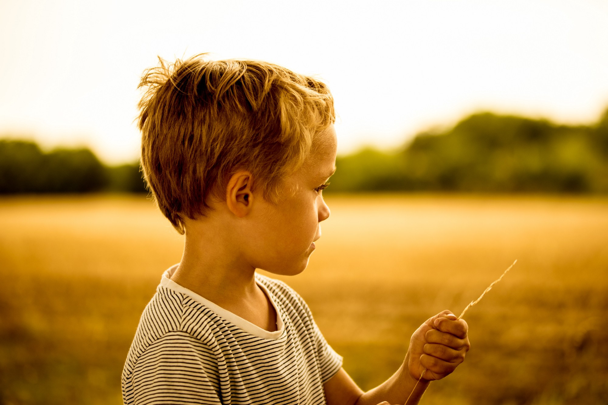 anxious young boy holding piece of straw looking at a field